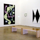 Exhibition: Recent Work. Two person show with Sigman Polke, Milton Keynes Gallery / 1