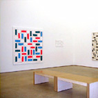 Exhibition: Recent Work. Two person show with Sigman Polke, Milton Keynes Gallery / 4