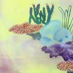 Work Undersea landscape